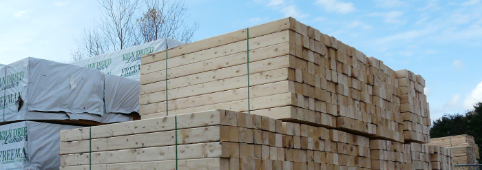 Freeman Eastern White Pine Lumber